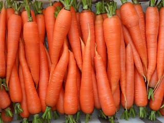 морковка в июле
