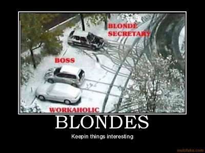 Blondes Dumb Blonde Demotivational Poster