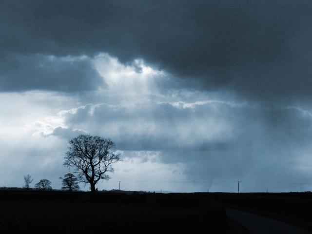 http://2.bp.blogspot.com/-c97Yuock6bM/T0Tj4K-1DoI/AAAAAAAAAno/trEcSR_wVbI/s1600/sky_tree.jpg