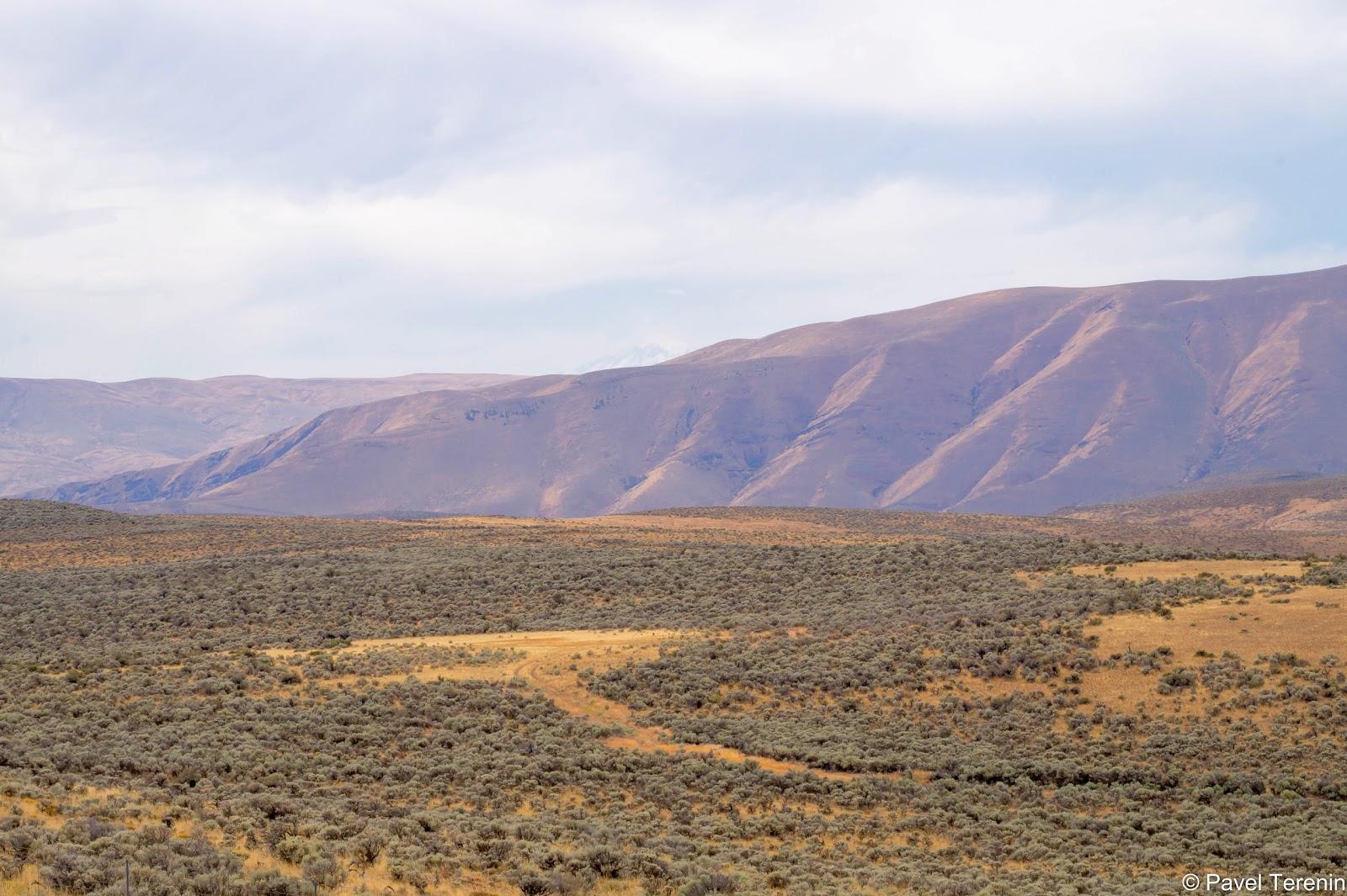 Пустыня штата Вашингтон