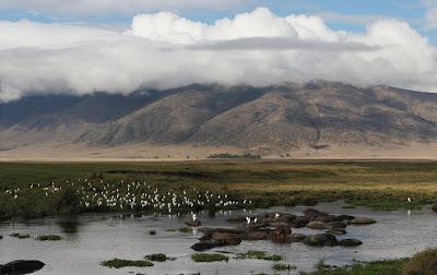 Ngorongoro UNESCO Heritage Site Tanzania