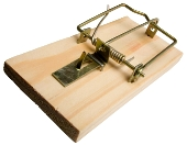 Wooden Mousetrap: Franchise business risks