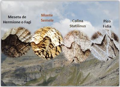 Mariposas del Género Hipparchia en España y Portugal