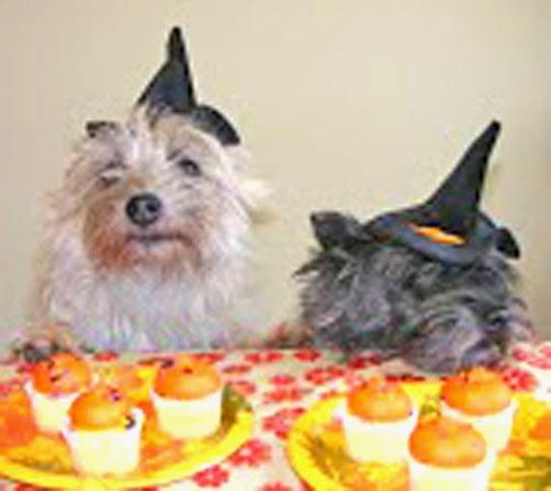 Beatrix & Missy Halloween