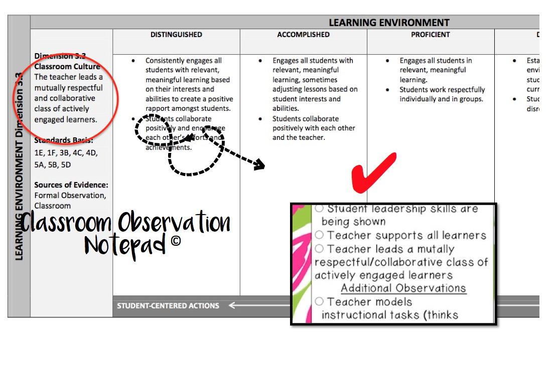 Observation Essay Outline