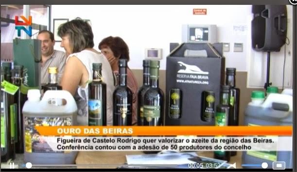 http://www.localvisao.tv/index.php/beira-interior/1861-ouro-das-beiras#fprrpopup-690128432