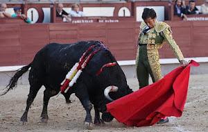 Juan Mora, otoño, el toreo