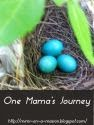 One Mama's Journey