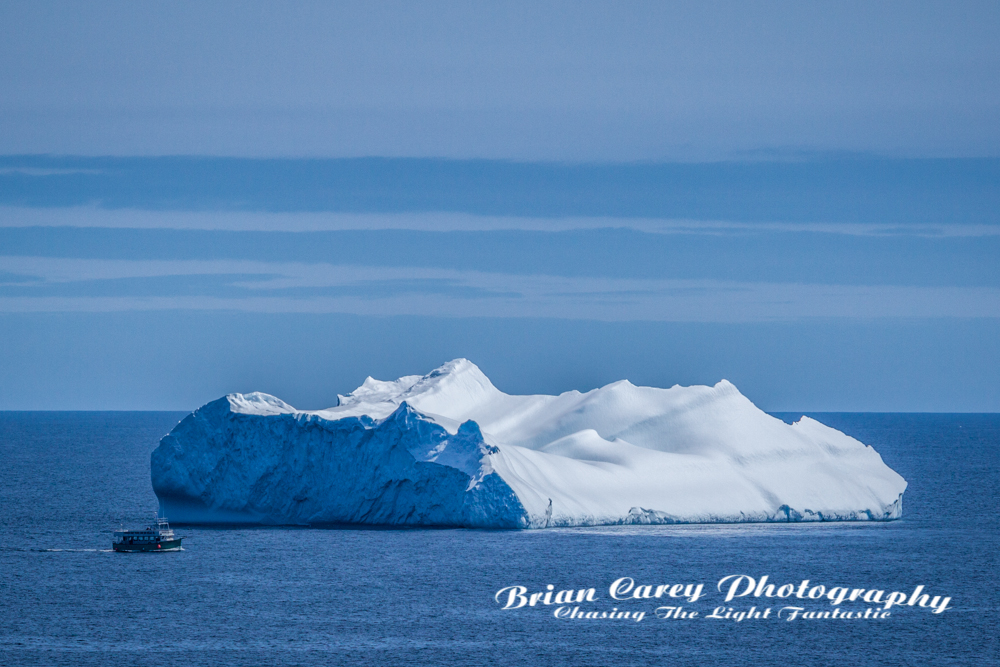 Photography by Brian Carey St John's Newfoundland