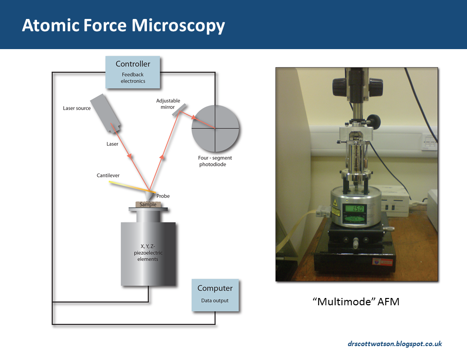 atomic force microscopy articles