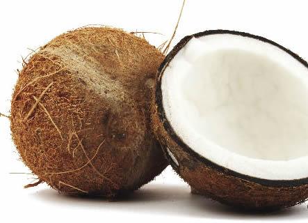 Semente leite de c co tamb m ajuda a manter a forma for Imagenes de coco