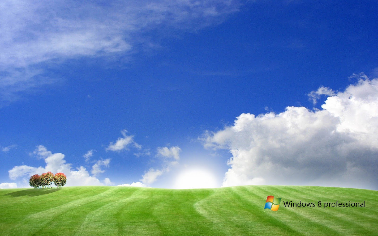 http://2.bp.blogspot.com/-cCXfubBb_vA/UC9V37YH8pI/AAAAAAAAFXw/vLaXSDiZWXo/s1600/hd-landschap-windows-8-wallpaper-met-gras-blauwe-lucht-wolken-en-windows-8-tekst-achtergrond.jpg