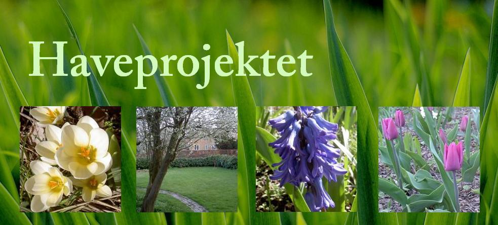 Haveprojektet