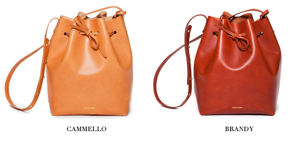 Mansur Gavriel bucket bags for spring