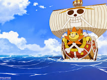 Planos del Thousand Sunny