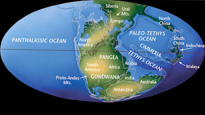 Permian mass extinction linked to Pangaea formation