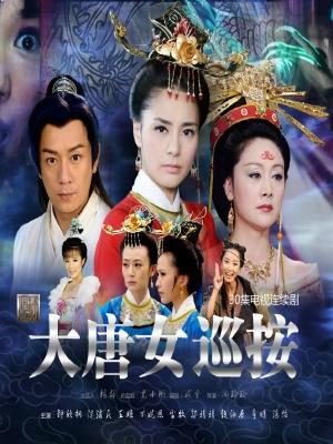 大唐女巡按 2010 2010 poster