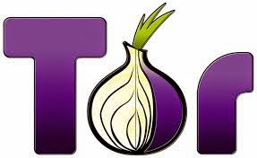 Hide IP with tor browser