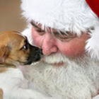 Papai Noel segurando um cachorro