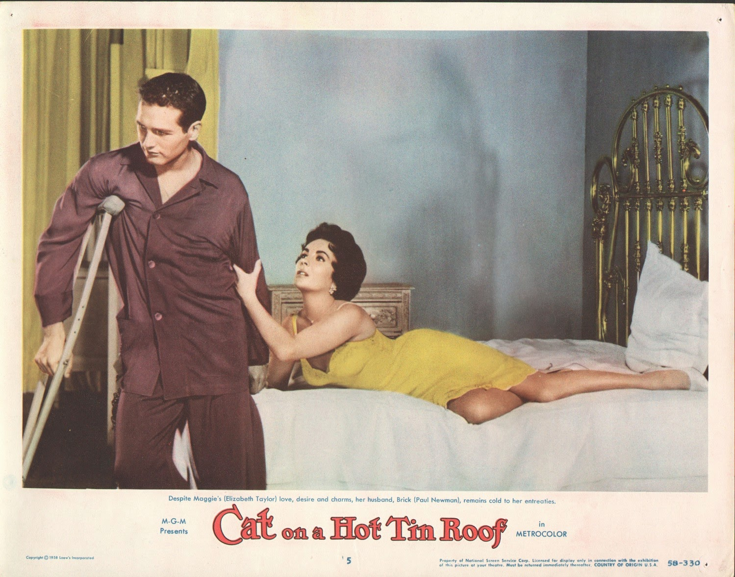 Cat On A Tin Roof Meaning Cat On A Hot Tin Roof The Never