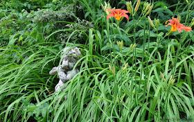 Le Jardin du Bois-Joli...
