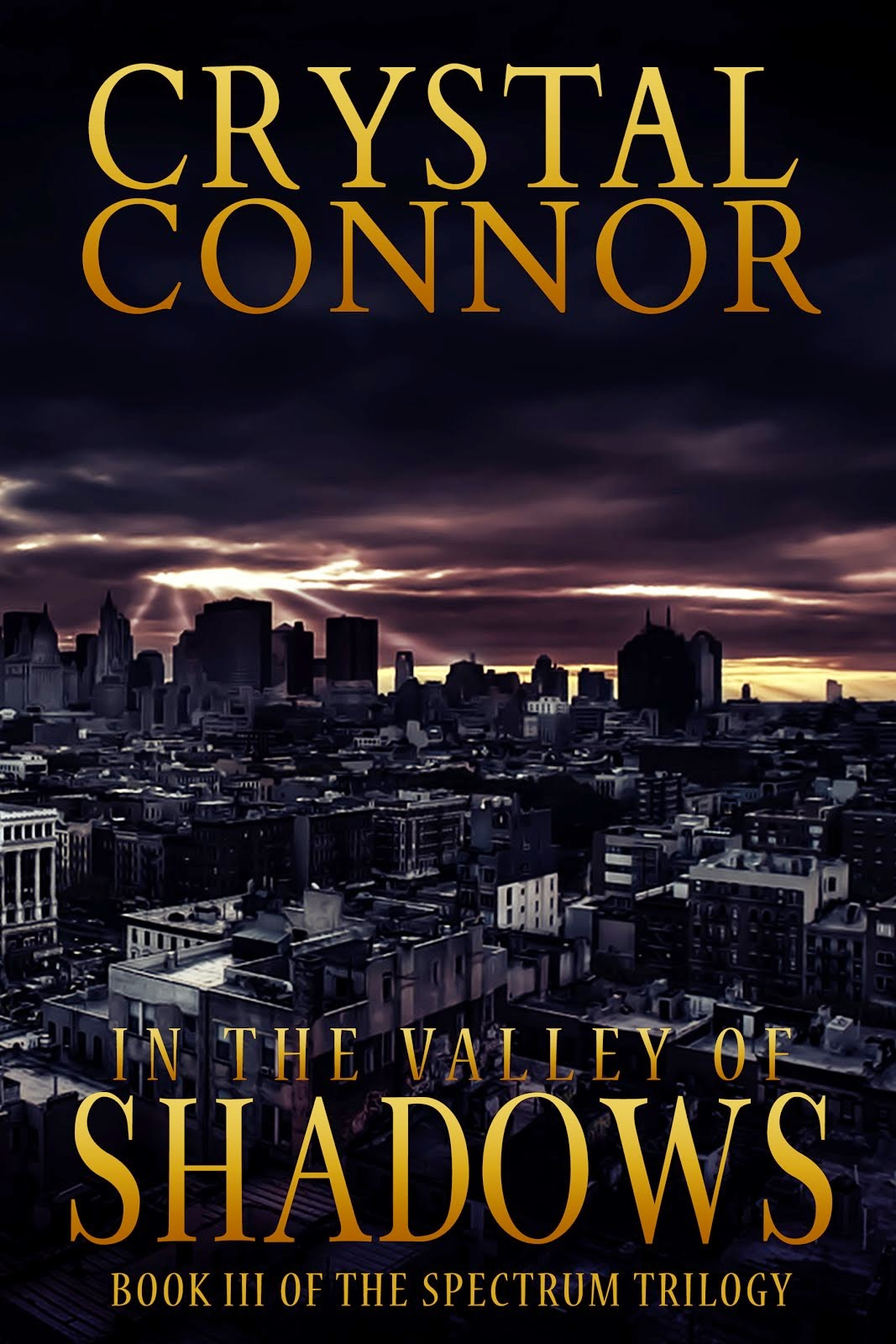 Click here to purchase In The Valley of Shadows!