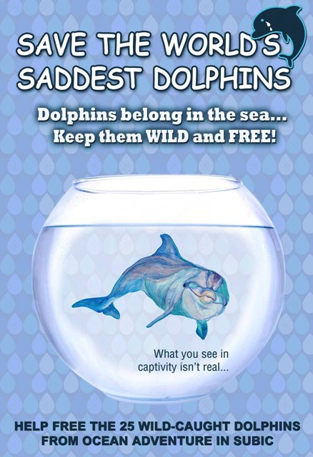 save the dolphins Dolphins in peril in the gulf of mexico wdc and save the blue announce partnership and dolphin protection campaign whale and dolphin conservation (wdc) and save the.