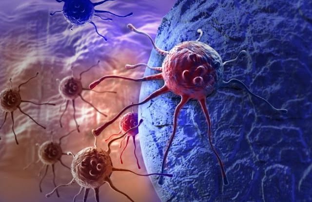 PROFESSOR FROM BERKELEY COLLEGE SAYS: People do not die of cancer! People die of chemotherapy Cancer-cells