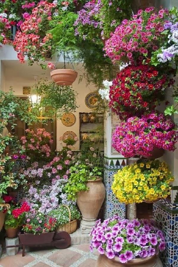 flores jardins pequenos:de produtos de jardinagem estes arranjos servem tanto para jardins