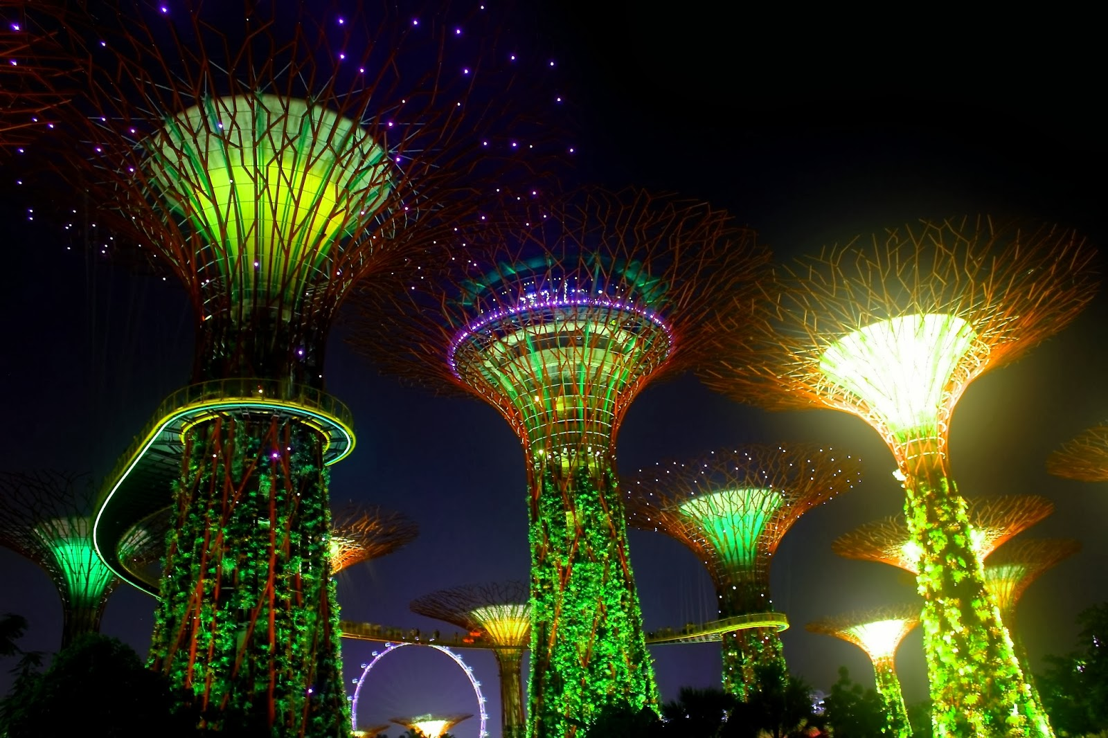Travel bugs mid autumn festival at gardens by the bay - Garden by the bay festival ...