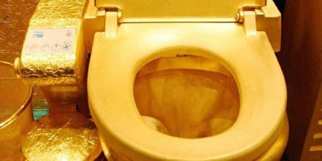 Rumah Pasangan Selebriti Ini Dilengkapi Toilet Bersepuh Emas!