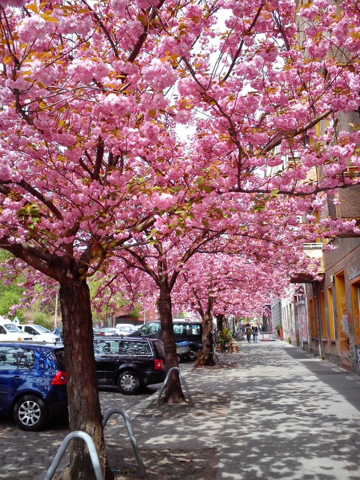 Kevät Berliinissä