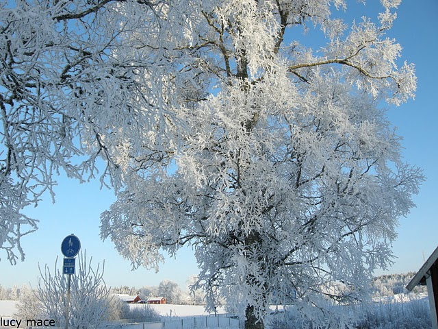 Tulahan: 10 negara dengan pemandangan salji terindah di dunia