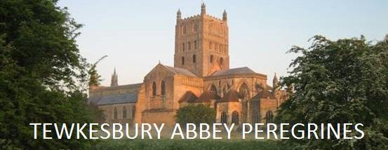Tewkesbury Abbey Peregrines