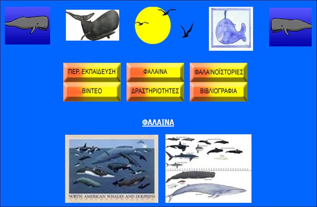 http://www.env-edu.gr/packs/Whale/falaina.html