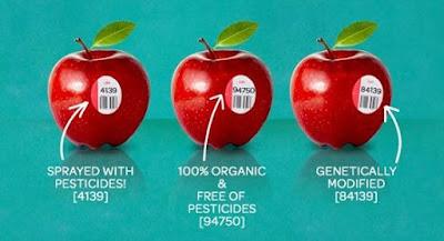 Label Buah-buahan