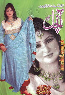 Aanchal digest january 2013