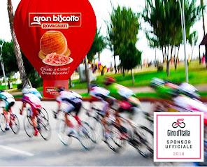 Rovagnati al Giro 101