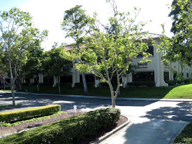 Yahoo's First Building 1995