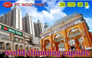 pelangsing wsc wootekh