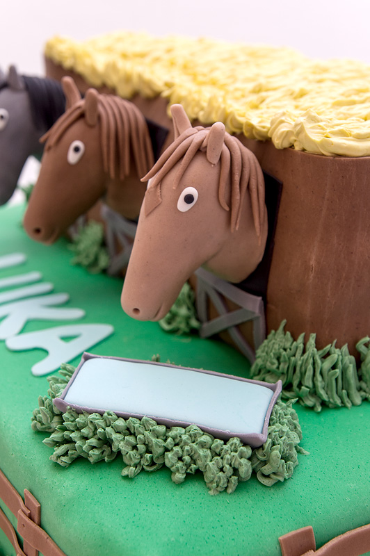 Horses in a barn fondant cake right