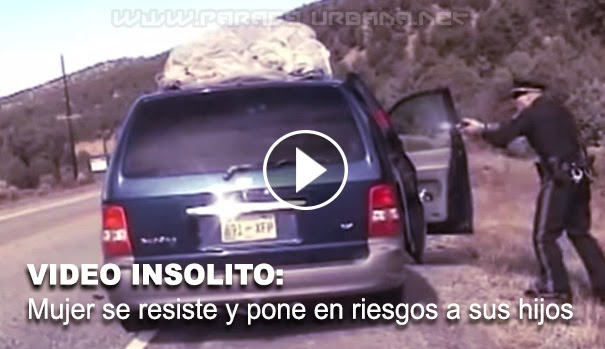 VIDEO INSOLITO - Policia dispara a forgoneta llena de niños, durante una detencion por exceso de velocidad