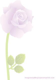una rosa para decorar el folio