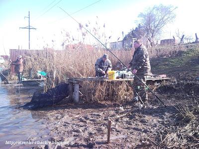 ловля тарани в Бринках, рыбалка на Бриньковском канале.