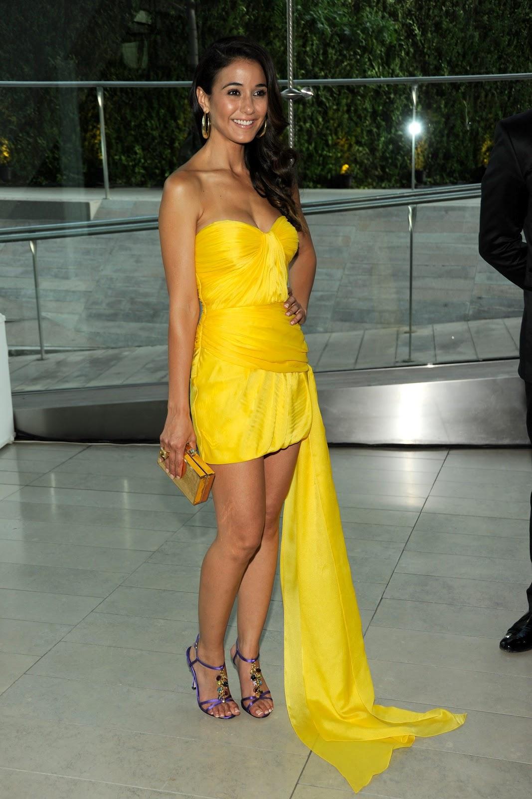Emmanuelle Chriqui 2011 Cfda Fashion Awards In Nyc (06062011)