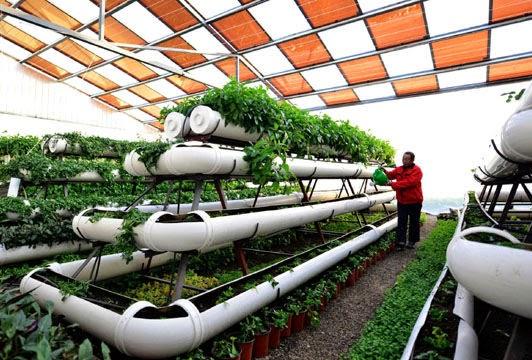 Tejidos técnicos para la agricultura