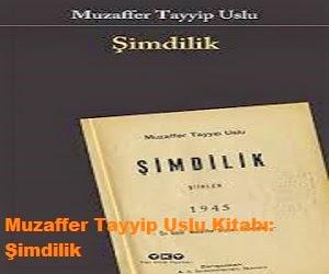 Muzaffer Tayyip Uslu Kitabı Şimdilik