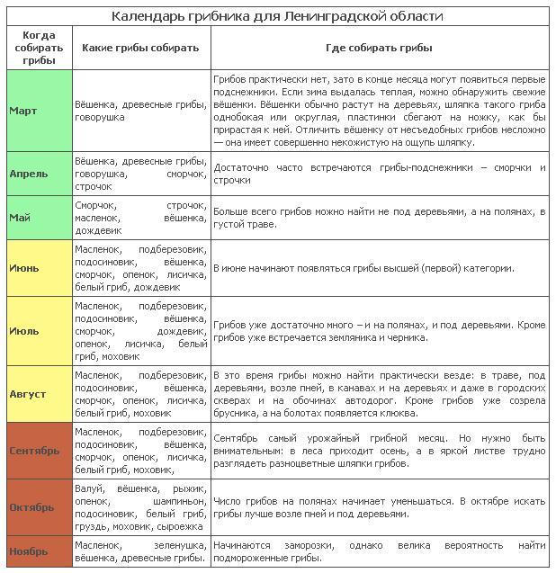 Календарь грибника 2015 для Ленинградской области и северных мест России