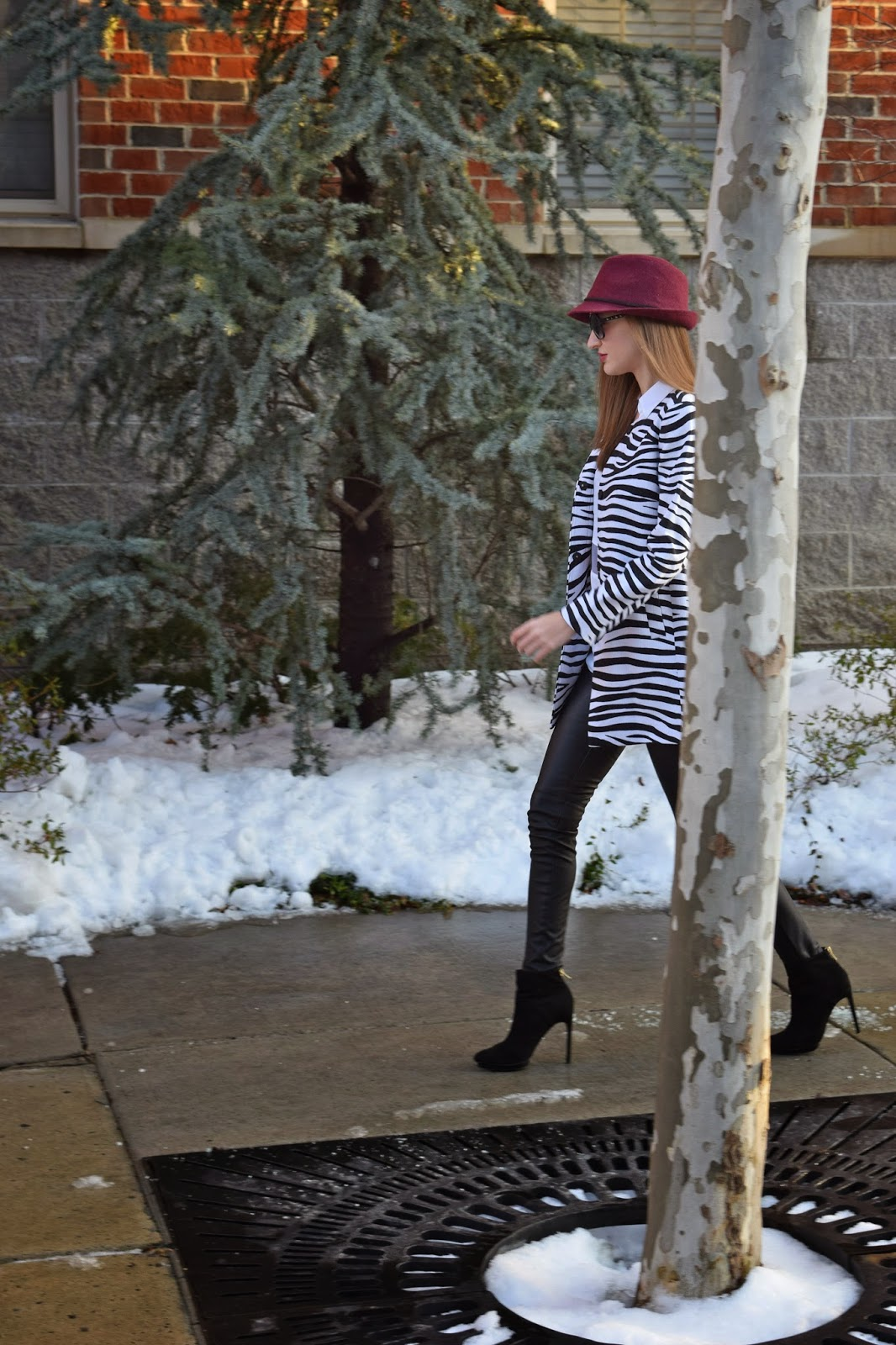 Winter look, Zebra printed jacket, Zara Platform Booties, Express Sleeveless Portofino Blouse