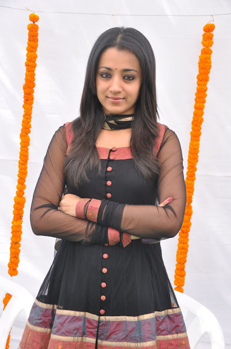 trisha s in hq format actress pics